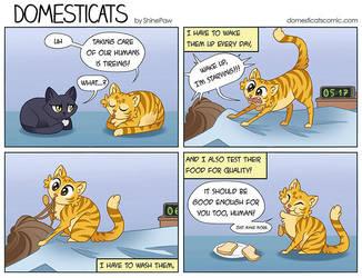 DomestiCats - Taking Care by ShinePawArt