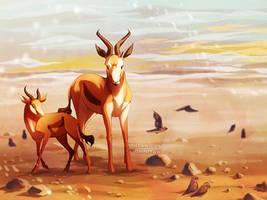 Gazelles by ShinePawArt