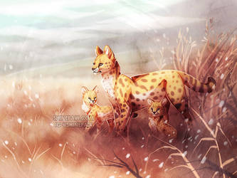 Serval Family by ShinePawArt