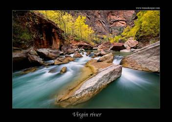 Virgin river by tomaskaspar