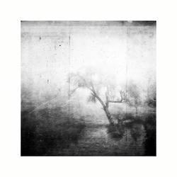 Volatile by Sei-Zako