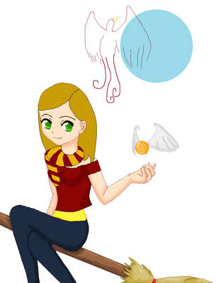 If I went to Hogwarts.. by shellymellon