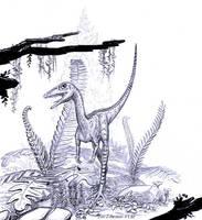 Coelophysis-bauri-juv-A by aspidel