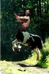 Bezerker Centaur by mplumb