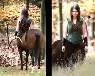 Forest Ranger / Centaur by mplumb