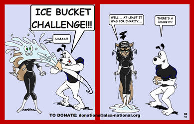 Ice Bucket Challenge by GrouchoM