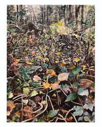 Autumn Forest by kseniakimlyk