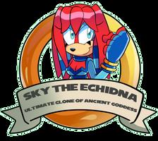 Commission: Sky ring ID by DredgeTH