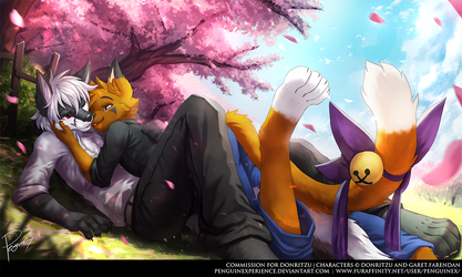 Commission for Donritzu by PenguinEXperience