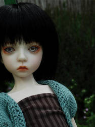 Dollstown Deogi 5 yrs by vallouise