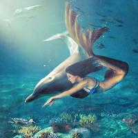 Mermaid and dolphin racing by sjoekie