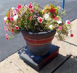 Flower Pot by Leucrota