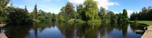 Richmond Park - Panoramic by listerrd52169
