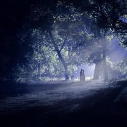 Midnight.. by Khomenko