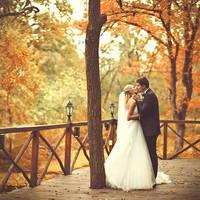 Some of wedding.. by Khomenko