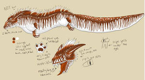 Sulituan Ref by WindieDragon