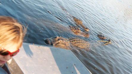 Gators 3 - Billie Swamp Safari by Riastrad729
