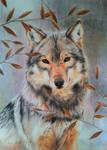 Wolf portrait V by BeckyKidus
