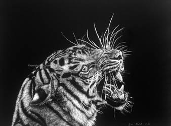 Hear Me Roar by BeckyKidus