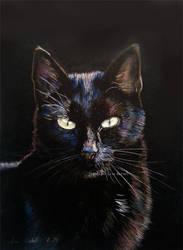 Back in Black by BeckyKidus
