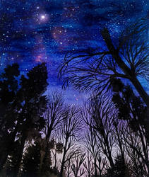 Under the Starry night by pisoulo