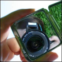 Mirrored by Lilywen