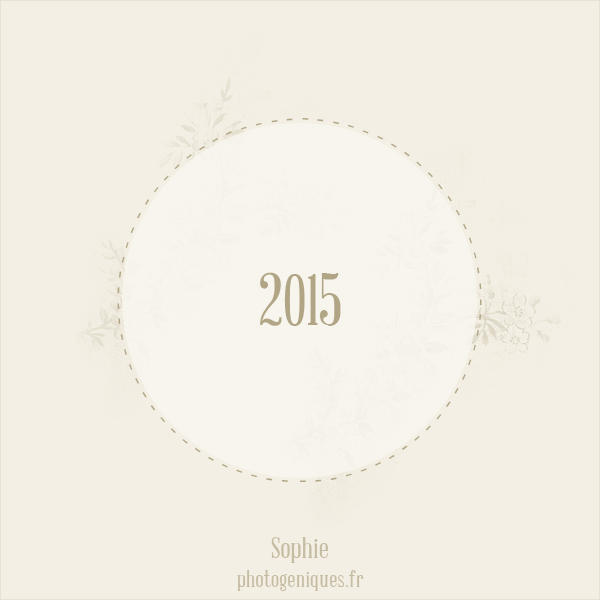 Voeux 2015 by photogeniques