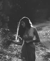 Garden of silence by CohenRon