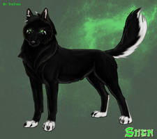 Shen the Wolf Comish by TheTyro