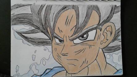 Migate no gokui Goku (old) by Johnsuky