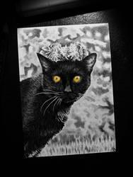 Blacky by C4ym4n
