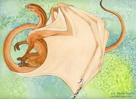 Brown Stripey Dragon by tser