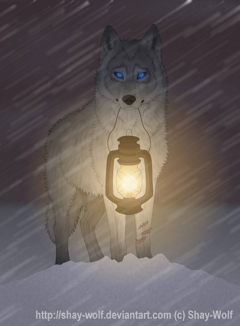 Light The Way- tribute by Shay-Wolf