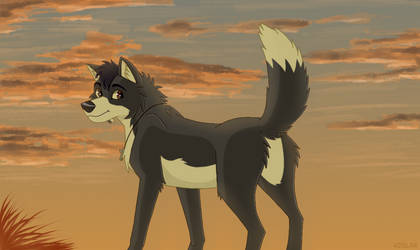 A Wolf's Beautiful Sunrise by theredknight100