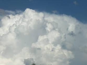 Sky 3 by iilittlewingsii