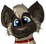 Siamese kitten by Charlie-Breen