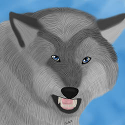 Wolf Realism by Charlie-Breen