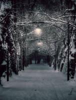 Silent night by hadeeldar