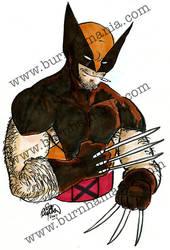 Wolverine by erikburnham