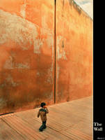 The Wall by BaciuC