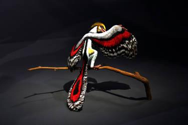 Prehistoric bird.. by renedox