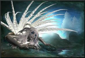 Sea Urchin by Freyja-M