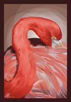 Flamingo by keyzpoof