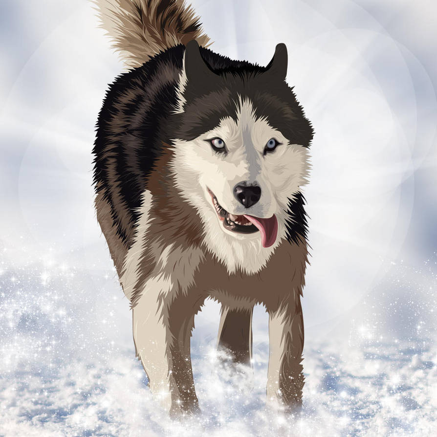Sled Dog by keyzpoof