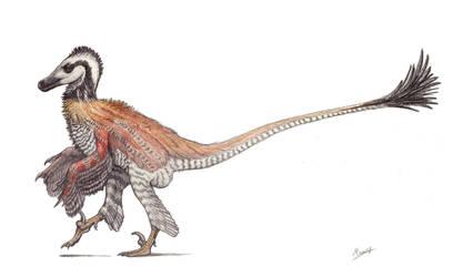Velociraptor mongoliensis by MoriceMonkey93
