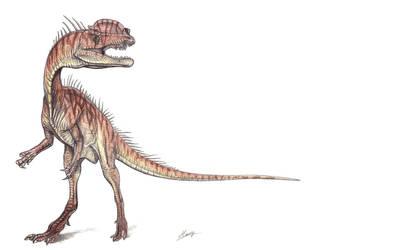 Dilophosaurus wheterilli by MoriceMonkey93