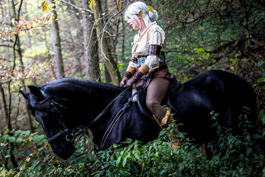 Cirilla and Kelpie cosplay by Koneko94
