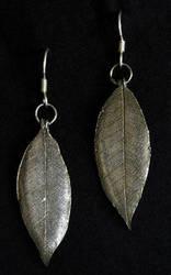 Leaves by colmark-designs