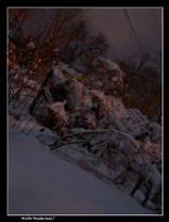 Winter Wonderland 1 by vbgecko