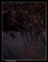 Winter Wonderland 2 by vbgecko